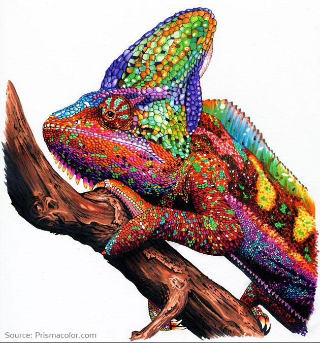 Prismacolor Art Example