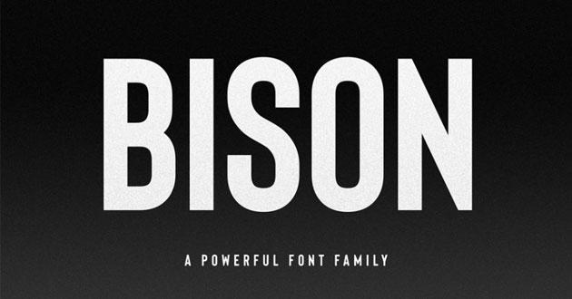 Best Display Fonts Bison