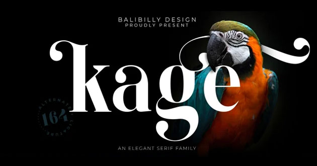 Best Display Fonts Kage