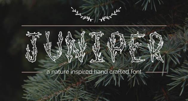 Nature And Plant Fonts Juniper Font