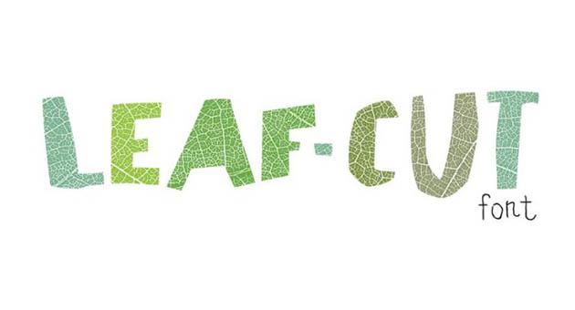 Nature And Plant Fonts Leaf Cut Font