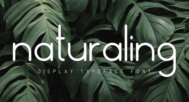 Nature And Plant Fonts Naturaling