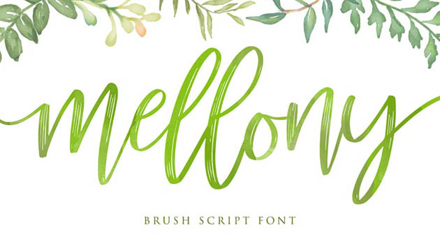 Nature And Plant Fonts Mellony