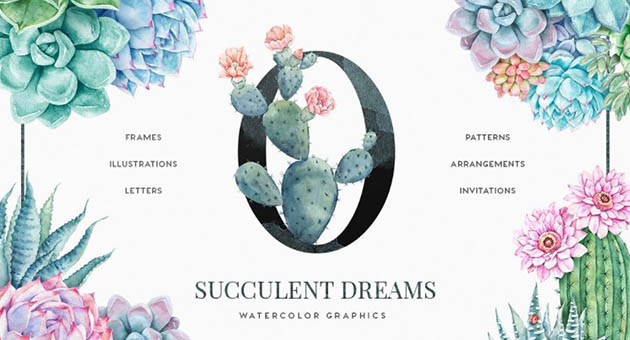 Nature And Plant Fonts Succulent Dreams