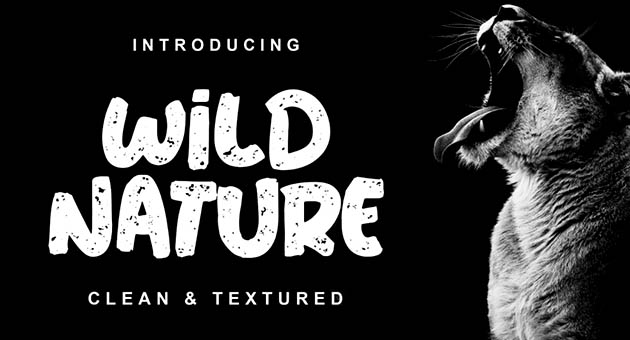 Nature And Plant Fonts Wild Nature
